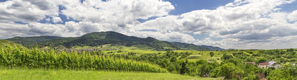 Baden - Panorama