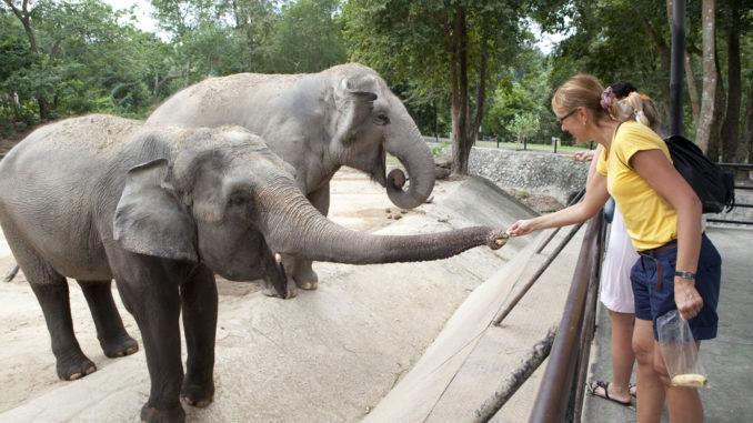 Die zehn schönsten Zoos in Deutschland